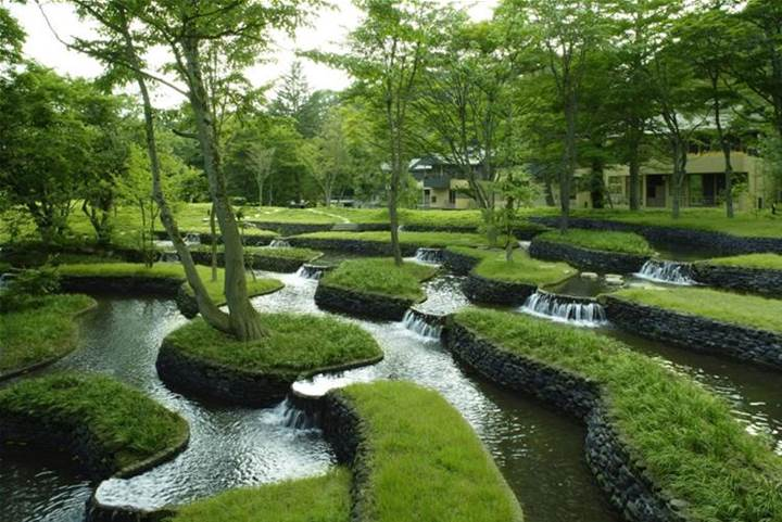 ___ Garden With Well Groomed Grass And Water Park In The Midst Of Dense.jpg